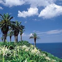 日南海岸是